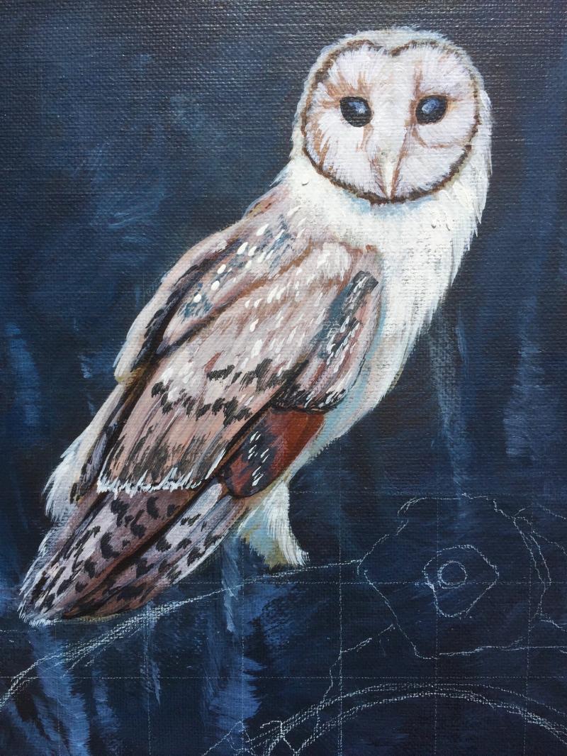 lechuza owl .jpg