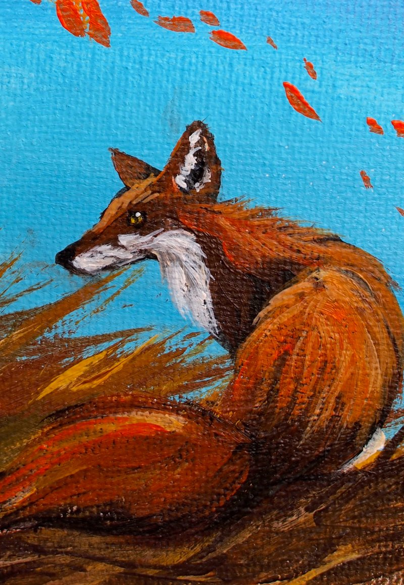 fall fox 2.jpg