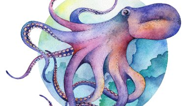 Octopus How to paint with Watercolor Free class step by step