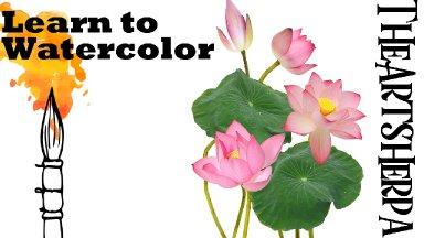 Botanical Pink Lotus Flower