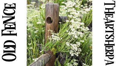 Rustic Wood Fence | Wildflowers | Step by step Tutorial Acrylic | TheArtSherpa