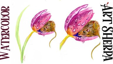 MOUSE IN A TULIP Easy How to Paint Watercolor Step by step   The Art Sherpa