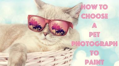 Big art quest #17 Paint your Pet Choosing the Picture