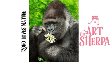 How to paint Koko the Gorilla  step by step Acrylic for beginners