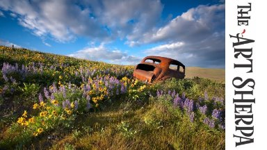 How to paint with Acrylic on Canvas old rusty car in flowers