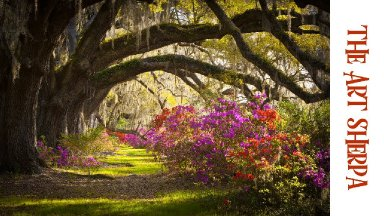 How to paint with Acrylic on Canvas Southern oak lane with Azaleas