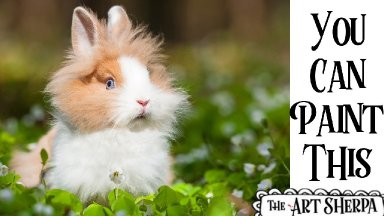 Easy Fluffy Bunny In clover  Acrylic painting tutorial step by step Live Streaming